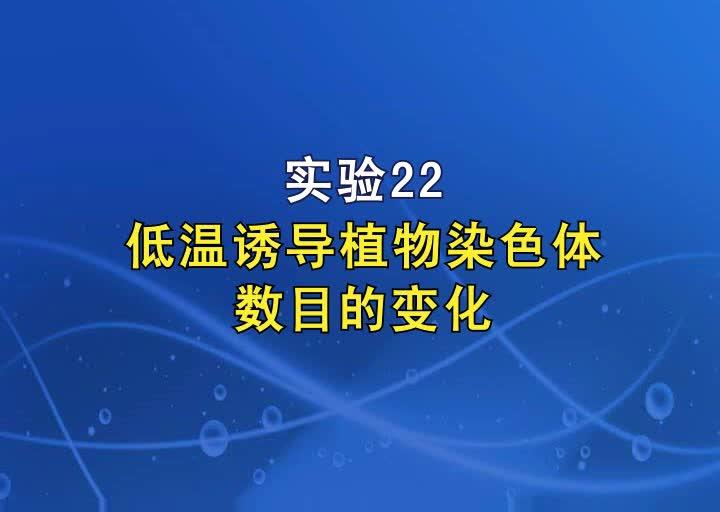 实验22低温诱导植物染色体数目的变化_自定义转码_720x480【高三一轮复习系列2021版步步高生物《大一轮复习讲义》】.MP4