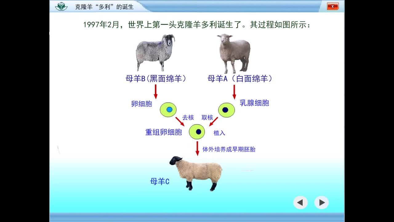 """克隆羊""""多利""""的诞生【高三一轮复习系列2021版步步高生物《大一轮复习讲义》】.mp4"""